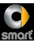 Comprar Radio DVD especifica para Smart