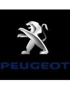 Comprar Kit vías separadas PEUGEOT